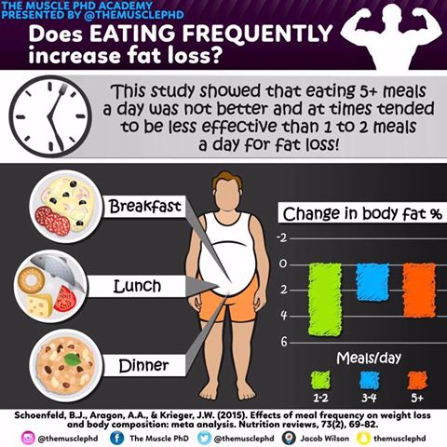 Meal-Frequency-and-Body-Comp.jpg